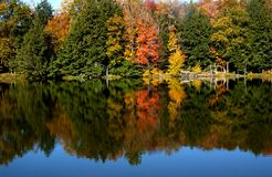 jesienią jeziora fotografia royalty free
