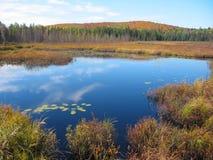jesienią jeziora odbicia zdjęcie royalty free