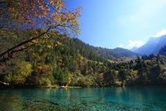 jesienią jiuzhaigou Obrazy Stock