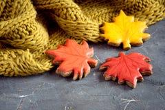Jesieni karmowy pojęcie z szalikiem i piernikową Horyzontalną fotografii kopii przestrzenią Obrazy Stock