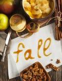 Jesieni karmowy tło z jabłkami, pikantność i dokrętkami, obrazy royalty free