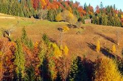 Jesieni Karpacka wioska, Ukraina Zdjęcia Stock