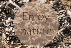 Jesieni kartka z pozdrowieniami, wycena Cieszy się naturę Fotografia Royalty Free