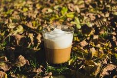 Jesieni kawa zdjęcia stock