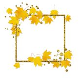 Jesieni klonowa gałązka z żółtymi liśćmi Obrazy Royalty Free