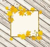 Jesieni klonowa gałązka z kolorem żółtym opuszcza na drewnie Obrazy Royalty Free