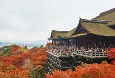 Jesieni kolorowy klonowy tło przy Kiyomizu-Dera świątynią Obraz Stock