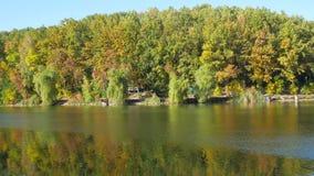 Jesieni kolorowy ulistnienie z jeziorem zbiory