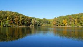 Jesieni kolorowy ulistnienie z jeziorem zbiory wideo