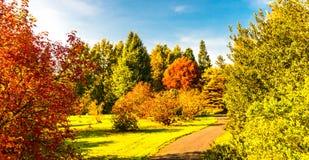 17/5000 jesieni krajobrazów Fotografia Stock