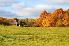 jesienią krajobraz wsi Fotografia Stock