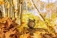 Jesieni krajobrazowa abstrakcja Spada z powrotem czas Światła dziennego oszczędzania czas obraz stock