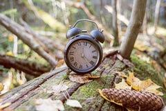 Jesieni krajobrazowa abstrakcja Spada z powrotem czas Światła dziennego oszczędzania czas zdjęcia stock