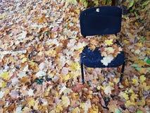 Jesieni krzesło fotografia royalty free