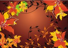 Jesieni kwiecisty tło fotografia stock