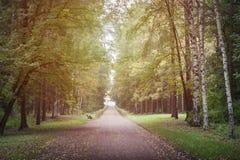 Jesieni lanscape parkowy tło Fotografia Royalty Free
