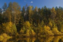 Jesieni Las jezioro Zdjęcia Royalty Free