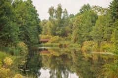 Jesieni lata krajobraz Zdjęcie Stock