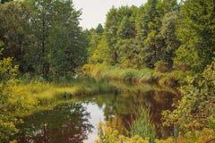 Jesieni lata krajobraz Obrazy Royalty Free
