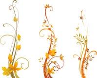 Jesieni ślimacznicy projekt Obrazy Stock