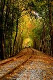 jesienią linia kolejowa Obrazy Stock