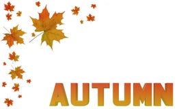 Jesieni literowanie i liście Obraz Royalty Free