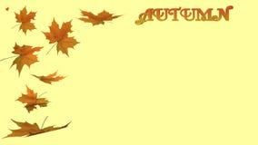 Jesieni literowanie i liście Zdjęcia Royalty Free