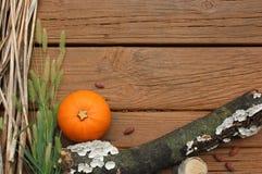 Jesieni lub spadku granica tło z/Dyniowym kabaczkiem i gałąź Obraz Stock