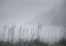 jesieni mgła obrazy royalty free