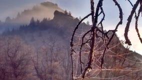 Jesieni mgły wysokości pustyni mroźny ranek zdjęcie royalty free