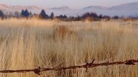 Jesieni mgły wysokości pustyni mroźny ranek Fotografia Royalty Free