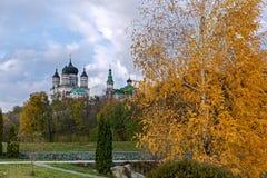 Jesieni miasta park Zdjęcie Stock