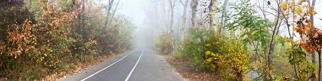 Jesieni miasta park, aleja jogging ślada i jeździć na rowerze, Fotografia Stock