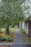 Jesieni miasta ulica Zdjęcie Stock