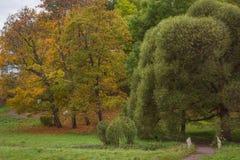 Jesieni Monrepos krajobrazu park Zdjęcia Royalty Free