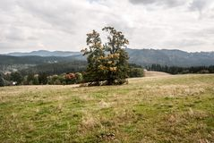 Jesieni Moravskoslezske Beskydy góry blisko Vysni Mohelnice w republika czech Zdjęcia Stock