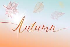 Jesieni muśnięcia ręka pisać tytuł z kolorowymi jaskrawymi liśćmi i słońce błyśniemy Zdjęcia Royalty Free