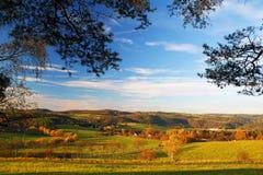 Jesieni natura z niebieskim niebem obraz royalty free