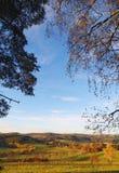 Jesieni natura z niebieskim niebem fotografia royalty free