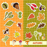 Jesieni natury dzieci aplikacyjni Zdjęcia Royalty Free