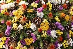 Jesieni natury pojęcie piękne jesień dekoracje Kolorowa jesień kwitnie przy cmentarzem - Halloween Obraz Stock