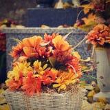 Jesieni natury pojęcie piękne jesień dekoracje Kolorowa jesień kwitnie przy cmentarzem - Halloween fotografia royalty free