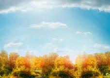 Jesieni natury sceneria z krzakami i drzewami nad pięknym niebem Obrazy Royalty Free