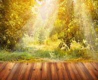 Jesieni natury tło z drewnianym tarasu i spadku drzewem Obrazy Stock