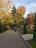 Jesieni niebieskie niebo i zdjęcie royalty free
