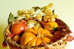 Jesieni żniwo Fotografia Stock