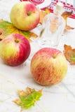 Jesieni żniwo Obrazy Stock