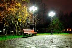 Jesieni nocy krajobraz nocy jesieni park Obraz Stock