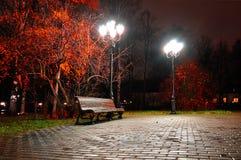 Jesieni nocy miasto Nocy jesieni krajobraz nocy jesieni park Zdjęcia Stock