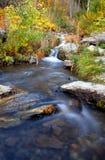 jesienią oaza obraz royalty free
